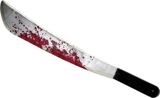 Výsledek obrázku pro krvavá mačeta