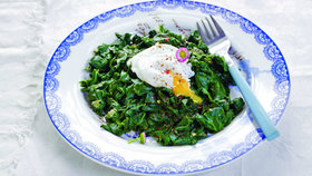 Špenát z kopřiv se ztraceným vejcem Foto: