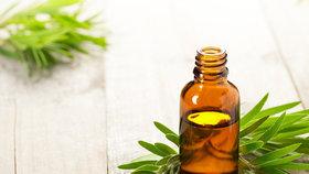 Tea tree olej je přírodní zázrak Foto: