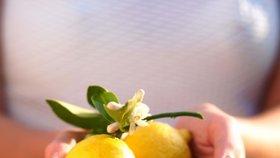 Zázračný citron Foto: