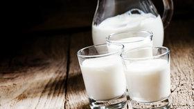 V čem je kozí mléko lepší než kravské? Foto: