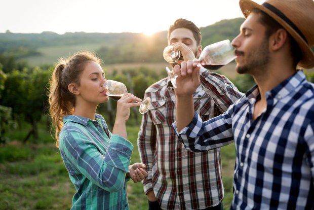 Co znamená, když je víno Bio 3 Foto: