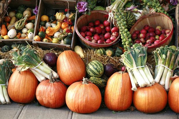 podzimní zelenina a ovoce Foto: