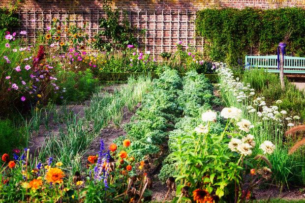 Odpočinek na zahradě je odměnou pro každého Foto: