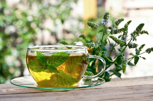 Pro některé je mátový čaj opravdovou lahůdkou, pro jiné lékem… Foto: