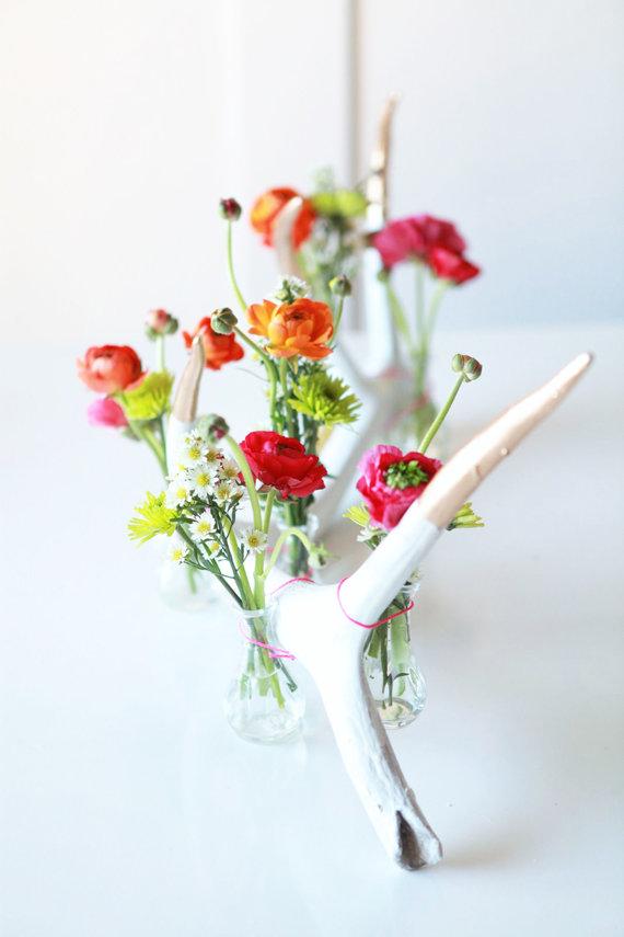 květiny na větvi Foto: