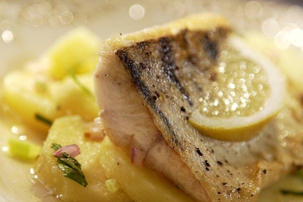 Candát na ryzlinku a rozmarýnu s francouzským bramborovým salátem  Foto: