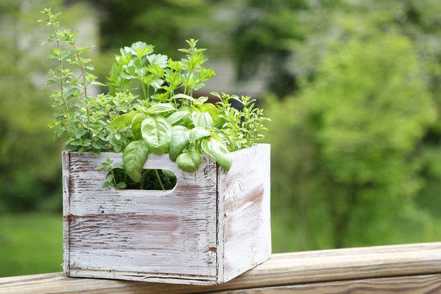 …a co teprve stará dřevěná přepravka, kterou můžeme vylepšit trochou laku Foto: