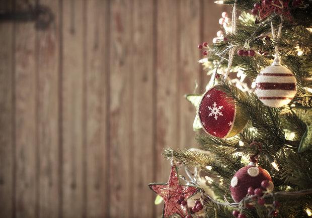 Jaký letos budete mít stromeček? Vybírejte z přemíry stylů 1 Foto: