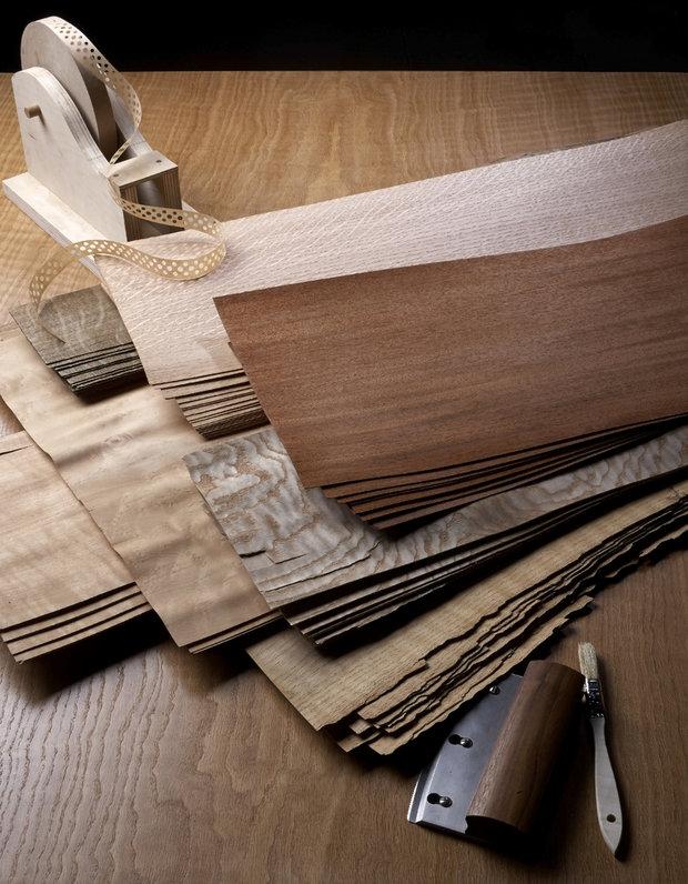 Dýhy - různé dřeviny.  Foto: