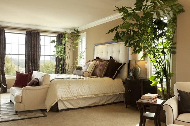 Rostliny pokoj zútulní a pohovka vytvoří prostor jen pro vás Foto: