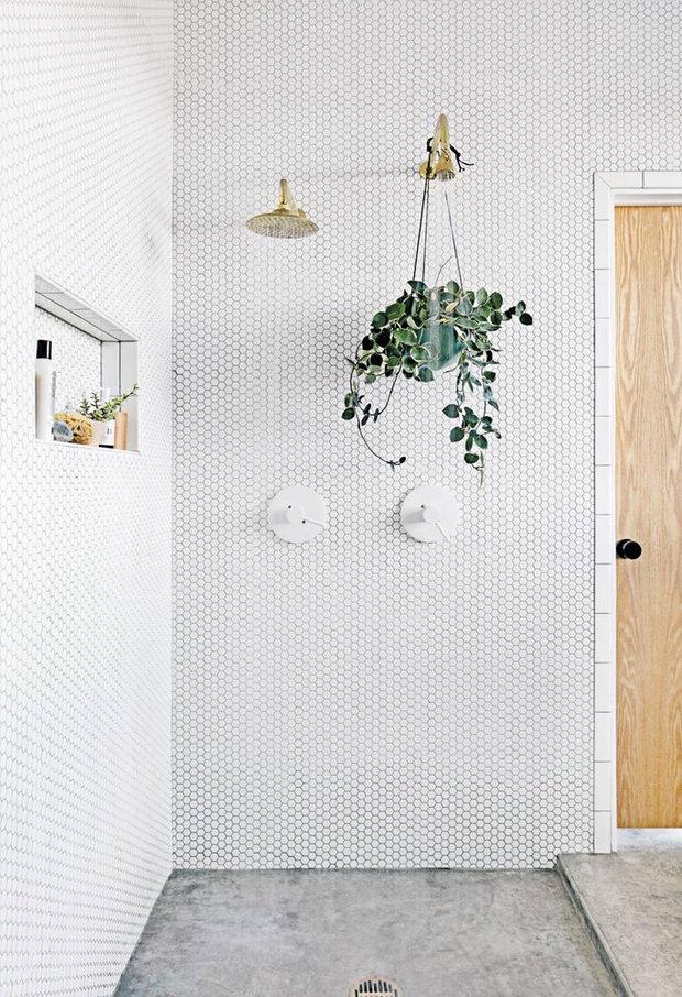Květiny posunou vaši koupenu o level výš. Vhodnější jsou ale do prostornějších místností s alespoň malým oknem.  Foto:
