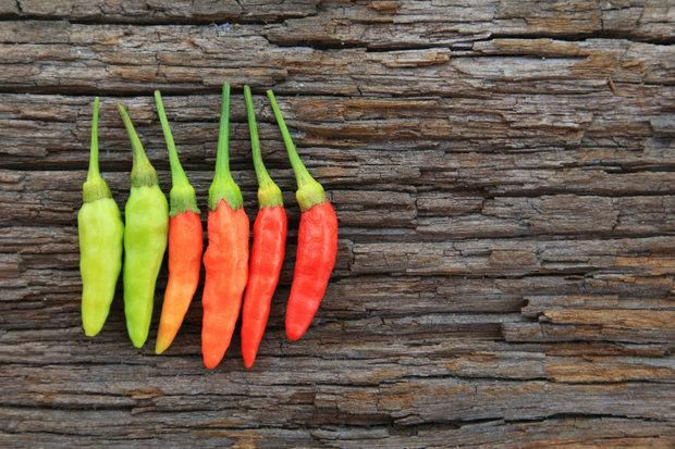 Zpracování chilli 5 Foto: Thinkstock