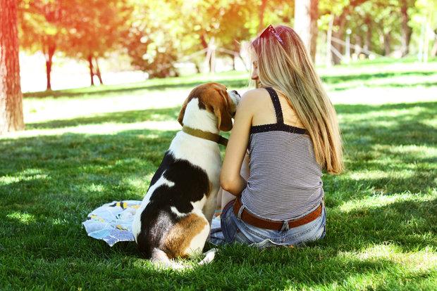 Podzim s loveckým psem... Foto: