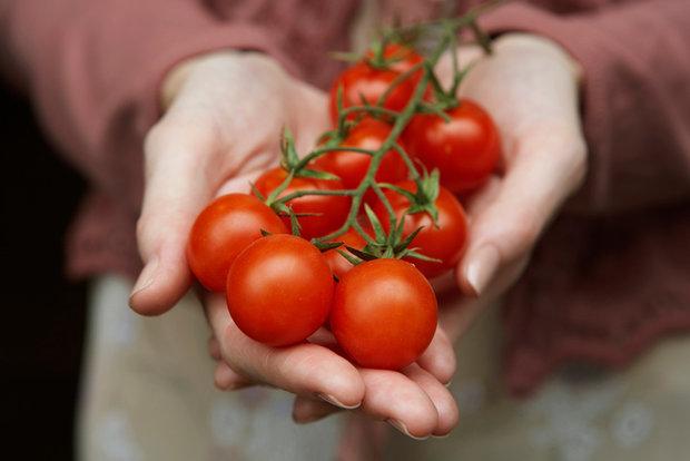 Fakta o kečupu, která vás překvapí 2 Foto:
