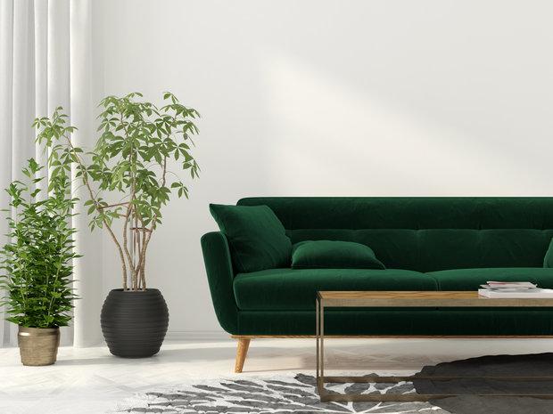 Zelená v interiéru 5 Foto:
