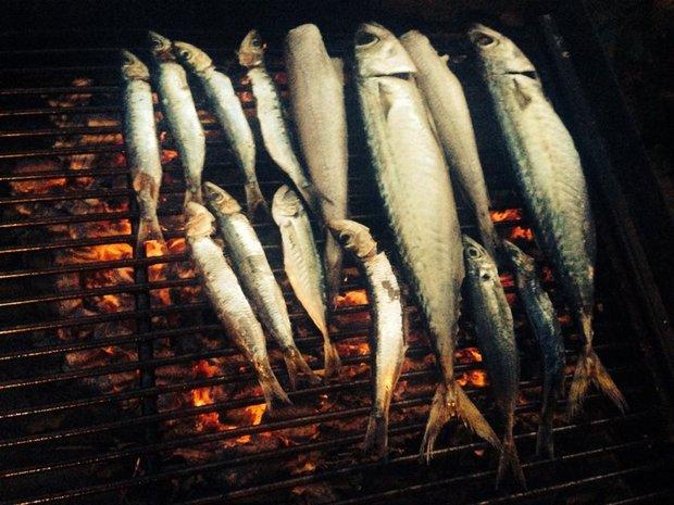 Grilované ryby - prostě je hoďte na gril a pak už si jen pochutnávejte... Foto: Klára Michalová
