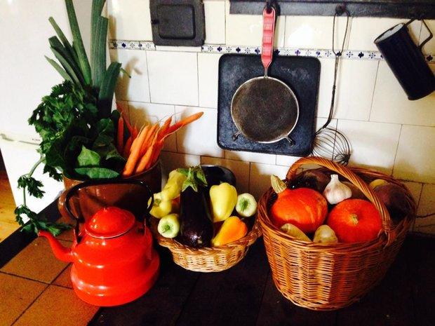 Zásoba zeleniny na týden Foto: Klára Michalová