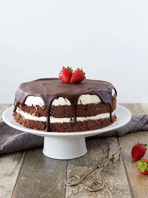 Míša dort 2 Foto: