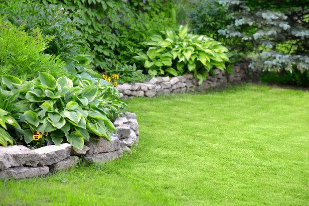 Trávník je klasikou anglických zahrad Foto: