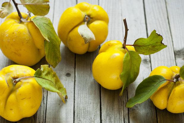 Netradiční letní ovoce - kdoule Foto: