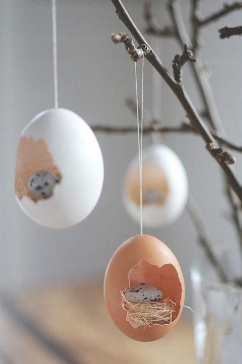 vajíčka ve vajíčku Foto: