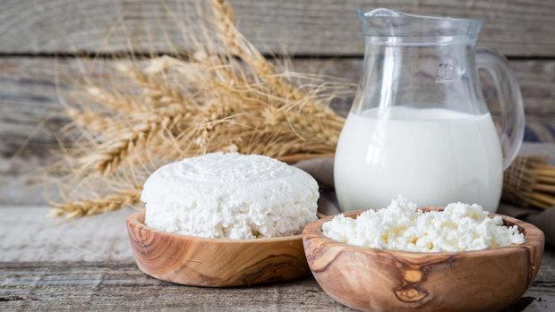 Mléčné výrobky jsou i pro dospělé, tak se jich nebojte Foto: