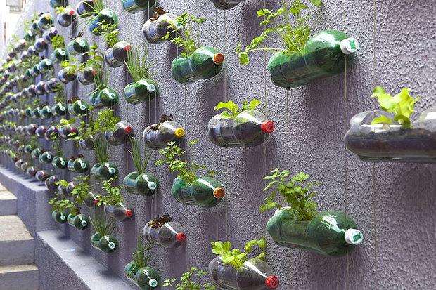Vertikální zahrada. Foto: