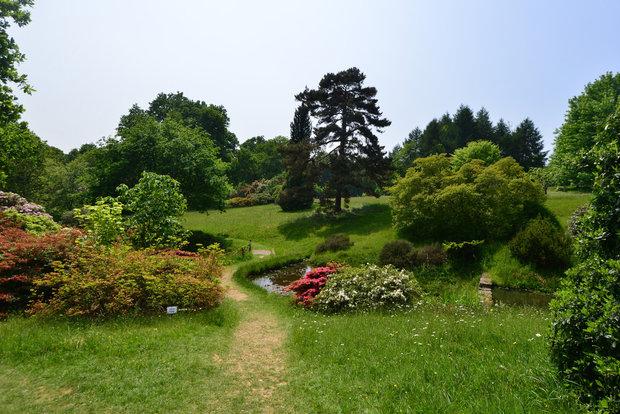 Anglické zahrady nemusí být vůbec symetrické Foto: