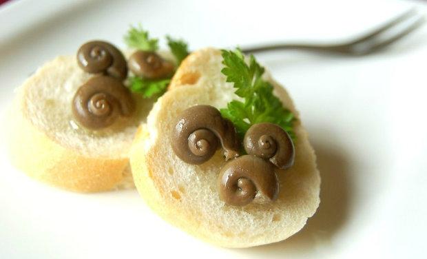 Snails Day 3
