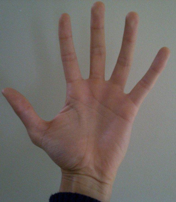 ruka vzduch1 Foto: