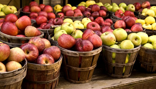 Něco na tom jablku je  Foto: