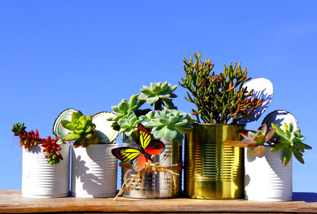 Jako vázy i květináče se dají využít staré plechovky Foto: