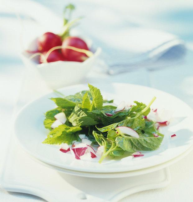 Jarní salát z bršlice