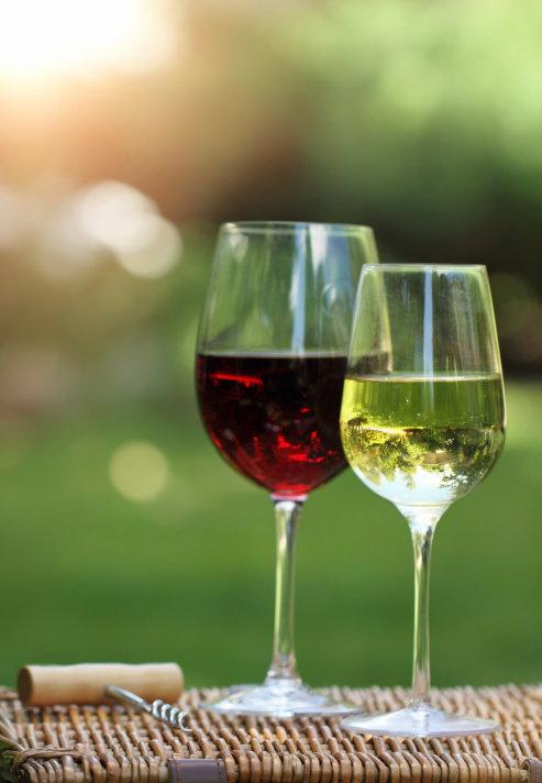 Zázraky vína 5 Foto: