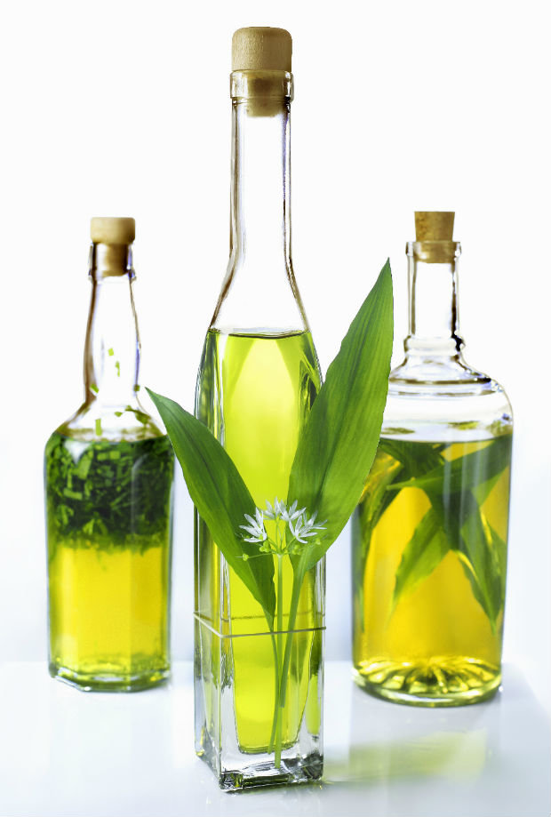 Olivový olej ochucený medvědím česnekem Foto: isifa.com
