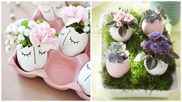 květiny ve skořápkách 1 Foto:
