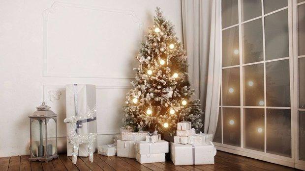 Šedivé Vánoce nemusí být v nudné 2 Foto: