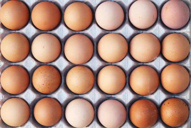 vajíčka Foto: