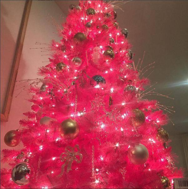 barevné vánoční stromečky Foto: