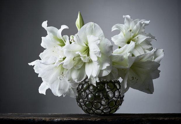 Lilie jsou symbolem čistoty a nevinnosti. Foto: