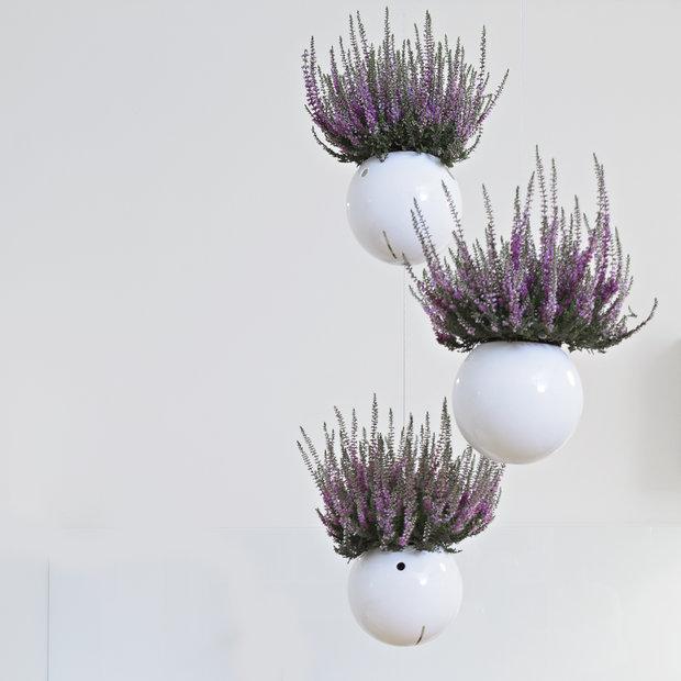 Proč si neprovonět místnost příjemnou květinovou vůní? A navíc tak můžete dodat do místnosti další zajímavou barvu květů Foto: