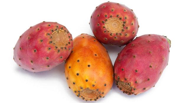 Plody opuncie jsou zdravé a velmi chutné Foto: