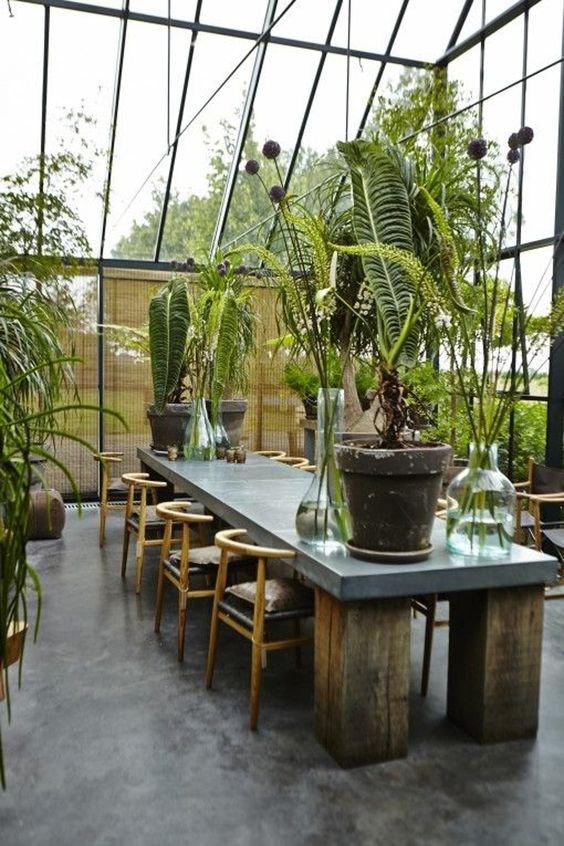 Rostliny do industriálních interiérů rozhodně patří. Jen dávejte pozor na výrazné květy Foto: