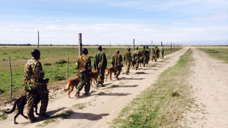 Kolem rezervace Ol Pejeta chodí stráž a hlídá nejen nosorožce, ale i jiné ohrožené druhy. Na vzácné zvíře ale nesmí nikdo ani sáhnout, jinak za to zaplatí životem. V tomto případě samozřejmě daleko méněcennějším, než je život Súdána.