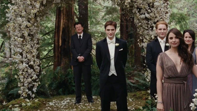 I svatebčané měly předepsané pudrové tóny šatů