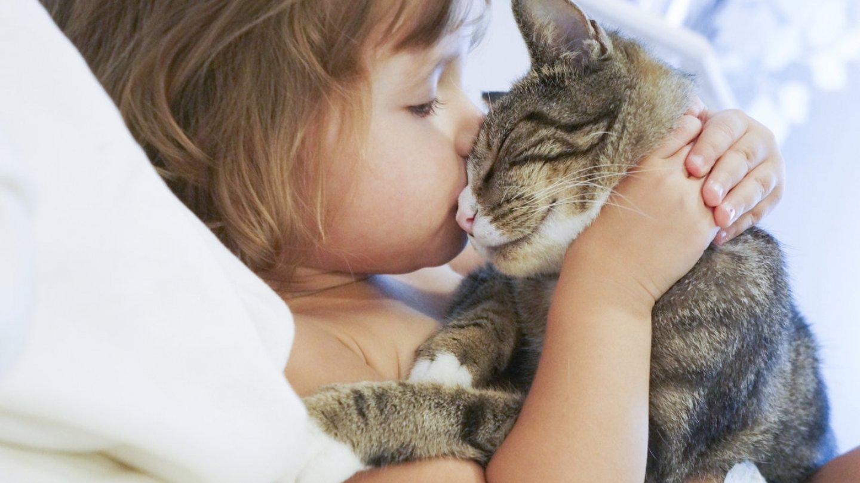 Extrémně roztomilé fotografie vyvolávají agresivitu - Obrázek 13