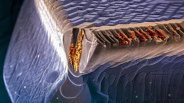 Takhle vypadají solární panely nové generace CIGS pod elektronovým mikroskopem