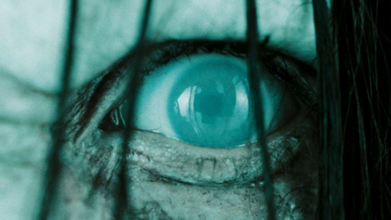 Kruhy - Pokračování hororové klasiky Kruh, se odehrává 13 let po událostech prvního filmu. Hlavní hrdinka zde objeví hrozivou pravdu o tom, že uvnitř obávaného filmu existuje ještě něco děsivějšího. A nejspíš u toho pár lidi umře.