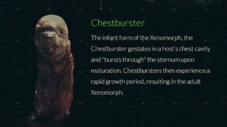 3) Chestburster
